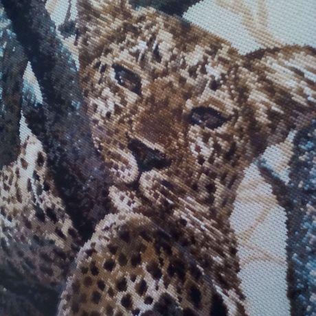 площадь троицы мишек париж семейство леопард