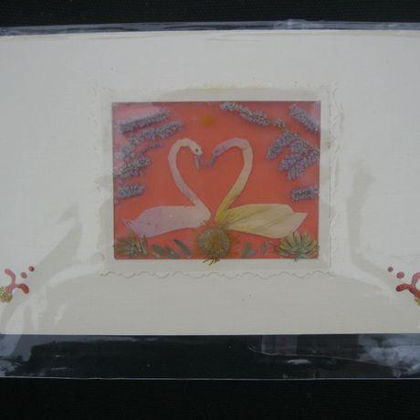 открытки поздравительные (сухих гербария из флористика цветов)