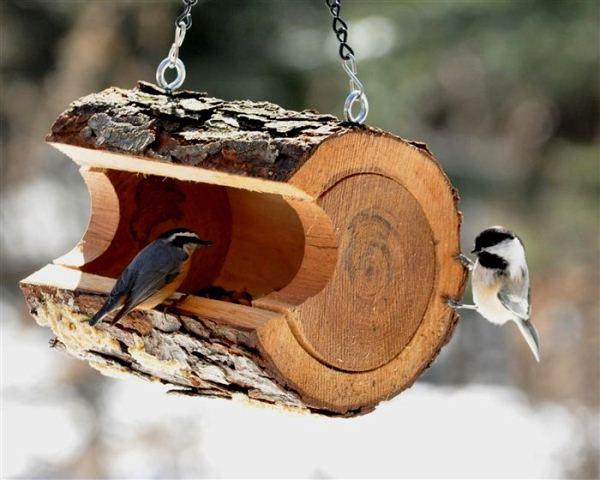 птиц для кормушка руками своими