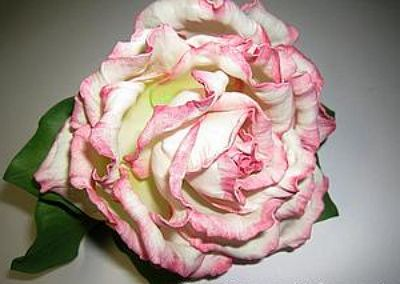 из мастер класс фоамирана цветы