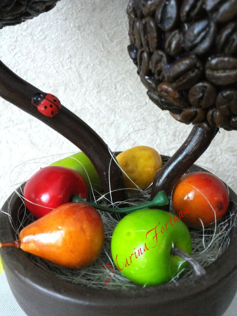 деревосчастья топиарий кофейный кофейное дерево
