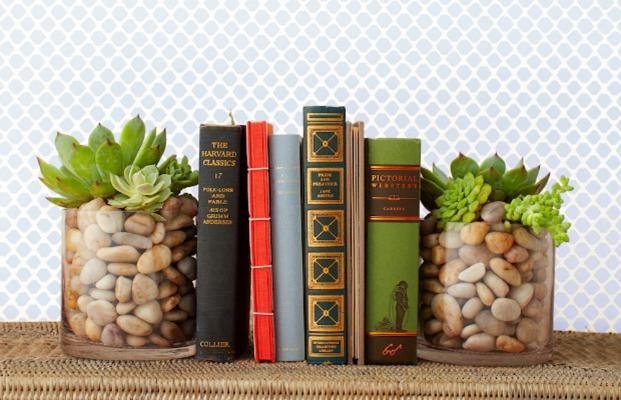 дома декор подставки для книг доме идеи суккуленты в растения