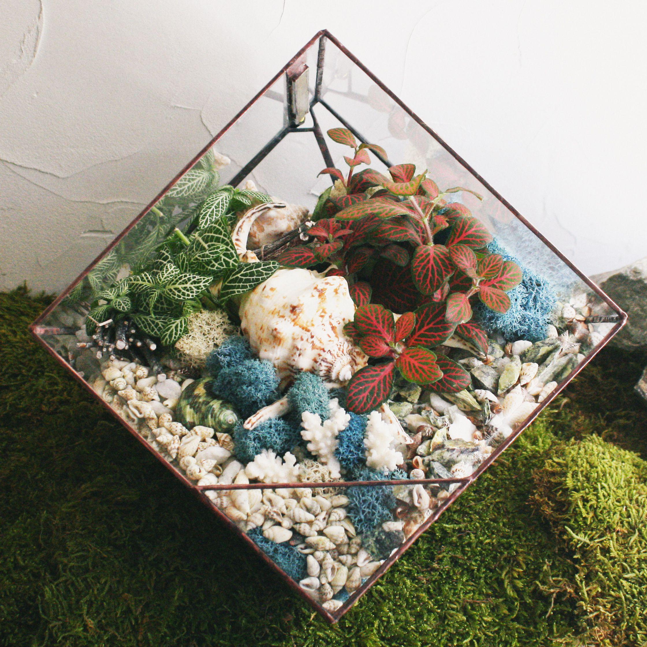 ночник светильник флорариум лампа свет растения геометрия подарок gift florarium plant glass geometric стекло